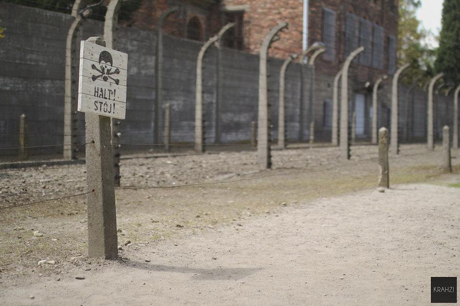 Auschwitz-2015-6.jpg