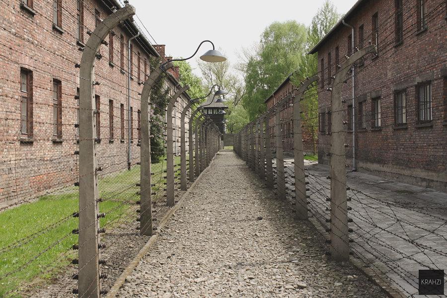 Auschwitz, le devoir de mémoire