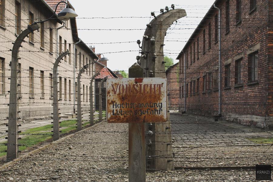 Auschwitz-2015-13.jpg
