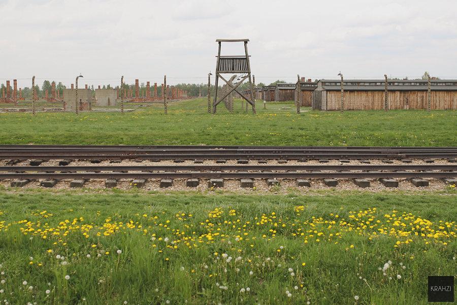 Auschwitz-2015-14.jpg
