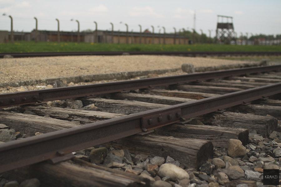 Auschwitz-2015-16.jpg