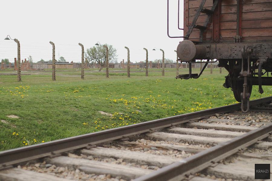 Auschwitz-2015-17.jpg
