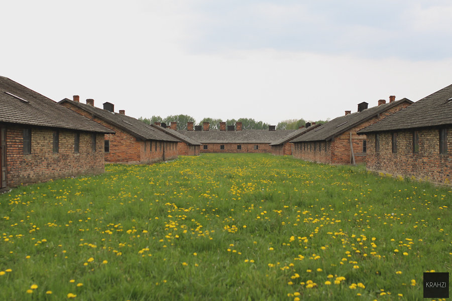 Auschwitz-2015-25.jpg