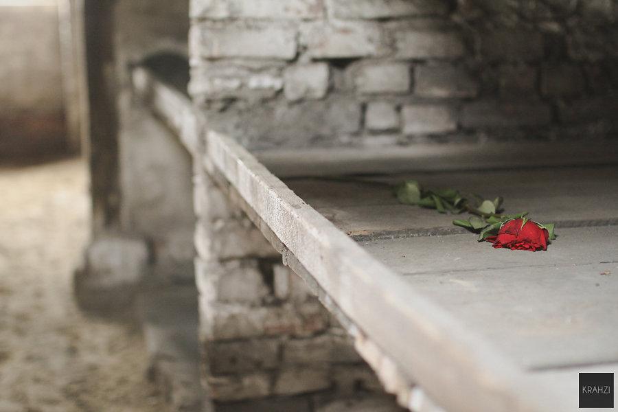 Auschwitz-2015-26.jpg