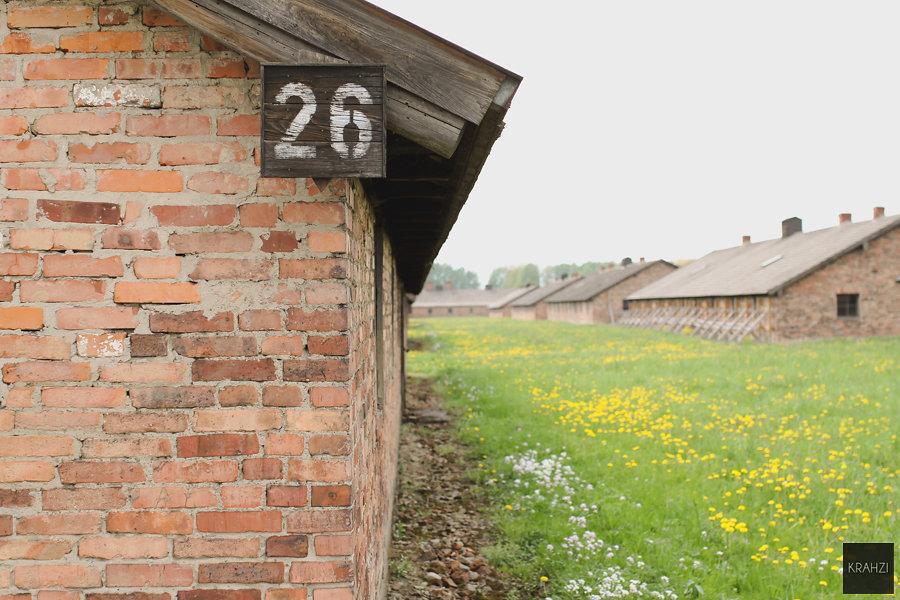 Auschwitz-2015-28.jpg
